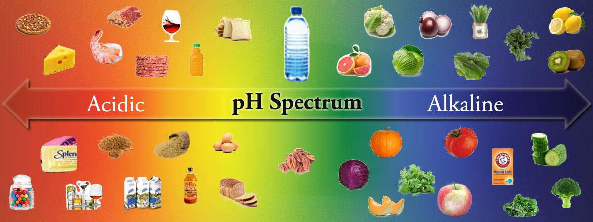 FREE Alkaline Food Chart!
